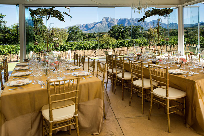 Janene & Lloyd: Vrede en Lust Wine Estate - Blank Canvas